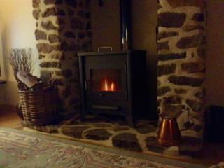 Lounge woodburner for those cooler evenings
