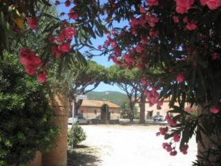 Casa Vacanze, Pian di Rocca
