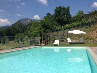 6 bedroom farmhouse in Tuscany with magnificent views, private pool, terrace and wi-fi available, Castiglione di Garfagnana
