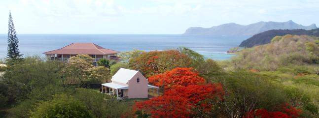 Cool breezy cottage with magnificent harbor view  in a garden setting 10 minutes from Hillsborough