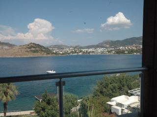Luxury Sea Front Villa / YalIkavak