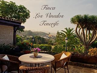 Finca Los Vinedos