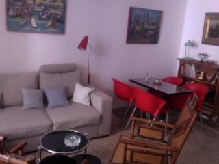 appartement dans un petit hôtel particulier, Arles