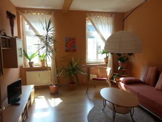 Schöne gemütliche Wohnung, Dresden