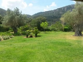 Houses rental vacacion Mallorca, Houses rental vacation Sierra Tramuntana, rental vacation Esporles