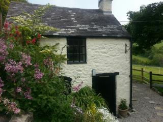 The Bothy, bijoux stone cottage with private wood-fired hot tub!, Tremeirchion