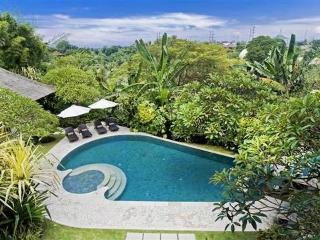 4 bedrooms hideaway villa in north sanur with free car&driver