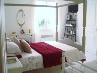 B & B near Royan/Saintes - Vintage Room sleeps 2/3, Luchat