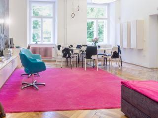 Big group friendly design apartment Munda house Ljubljana center M1