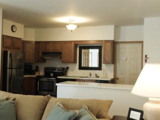 Great Kitchen Space - Open Floor Plan Lower Unit