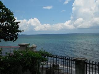 This is the view of the beach taken from the balcony in the master bedroom of the main home.