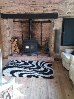 Kitchen log burner