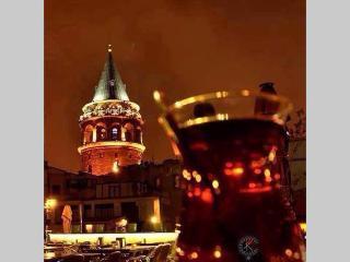ULTRA DELUX FLAT NEAR GALATA W/3BR, Istanbul