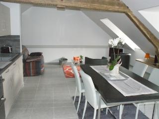 LODGES du Mont Brule meublés 3* avec SPA Confort, La Ferriere Aux Etangs