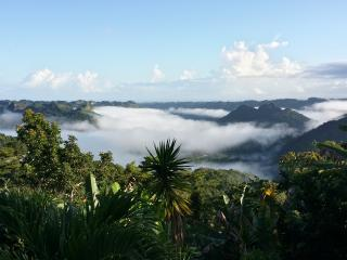 The Sanctuary - Lake View Mountain Home w/Wi-Fi, Utuado