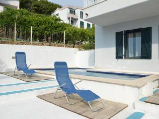 Two apartments in unity with pool CR143, Stanići