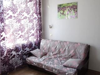 New 1bdr Apt With Fully Equipped Kitchen, Kharkiv