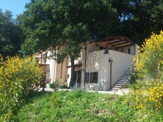 Le querce -Monolocale in villa
