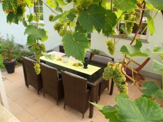 Winzernest - Ihr Lieblingsplatz an der Mosel, Mehring