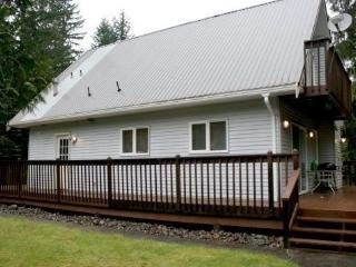 #96 Beautiful Mt. Baker Rim pet friendly cabin!, Glacier