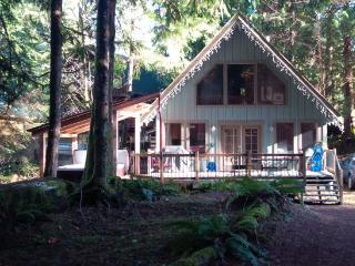 #99 Charming woodsy cabin with a private hot tub!, Glacier