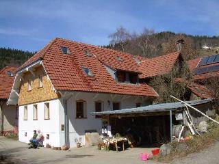 Guest Room in Wies (Baden-Württemberg) -  (# 7994), Buerchau