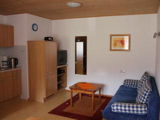 Vacation Apartment in Bad Rippoldsau-Schapbach - 441 sqft, 1 bedroom, max. 3 people (# 8571)