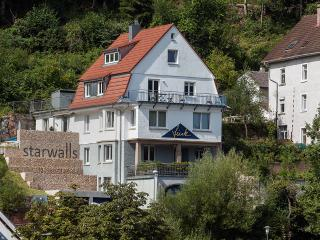 Villa Fink, Schramberg
