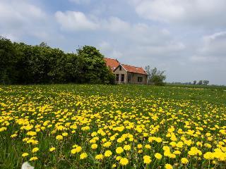 Klavertje 5, Friesland Province