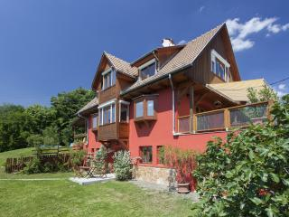 Near the Budapest, guest house with swimming pool, 6 rooms. Relaxation with children.