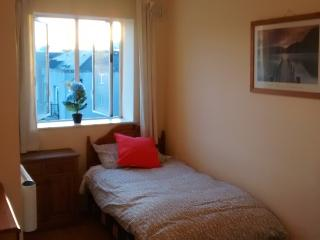 Two Bedroom City Apartment, Dublin