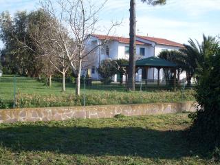 Verde Oasi, Pescia Romana