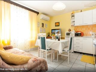 Apartment Urbi  1 for 4, air condition and bikes, Fuzine