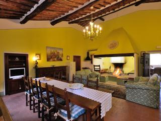 Beautiful  tuscan Villa not far from Siena 18 pax
