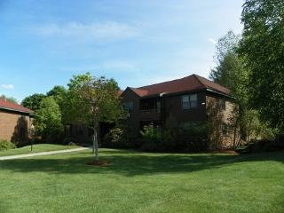 One Bedroom Deer Park Vacation Condo close to Recreation Center, Campton