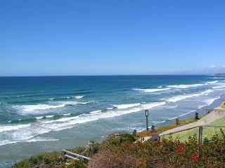 Sandy Toes, Sun Kissed Nose - 2 BR Ocean Front Solana Beach Vacation Rental