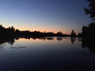 Night lake view