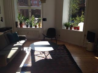 Spacious child-friendly Copenhagen apartment near Forum, Copenhague