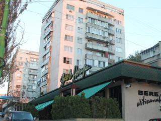 Bright and cozy apartment in CENTER - NEGRUZZI STR