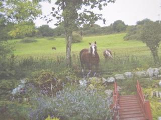 Llwyn Onnen Luxury Bungalow with Enclosed Garden