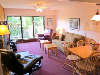 Mountain Green Deluxe 2br Condo  'Family Friendly', Killington