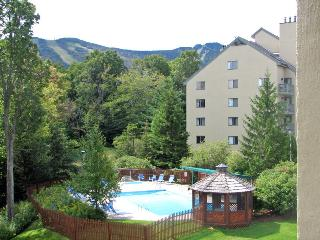Luxury Resort condo, walk to Kill Mt. views, HBO, Killington