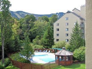 Luxury Resort condo, walk to Kill Mt. views, HBO, Killington