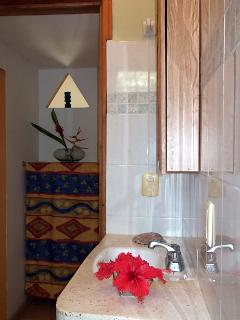 Bathroom with dressing