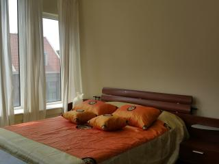 200M2 spacious Town house with garden, The Hague