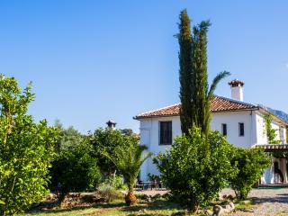 Casa Rural Huerta la Terrona, cortijo en finca de 3 hectareas