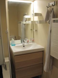 Salle de bain : lavabo et meuble de rangements