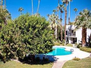 Palm Canyon Villa, Palm Springs