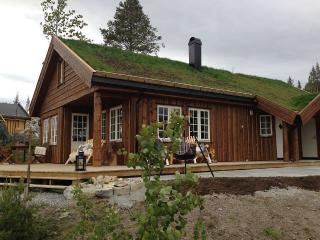 Luxury cottage with panoramic views, Hemsedal