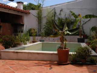 Beautiful garden studio, apartment, Figueiró dos Vinhos